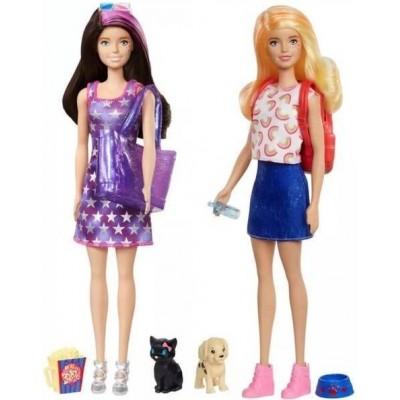 Barbie  Barbie Color Reveal Dog Park Movie Night GPD56