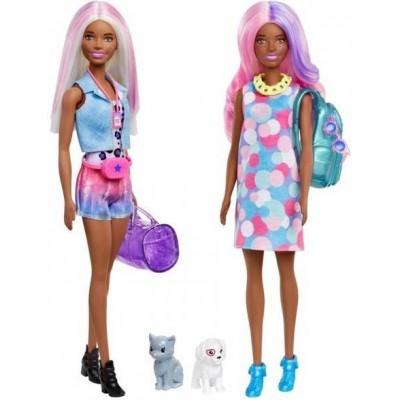 Barbie  Barbie Color Reveal Dog Park Movie Night GPD57