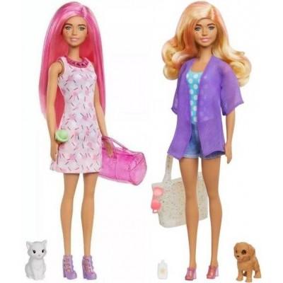 Barbie  Barbie Color Reveal Dog Park Movie Night GPD55