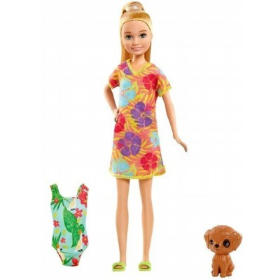 Barbie  Barbie Chelsea The Lost Birthday GRT89
